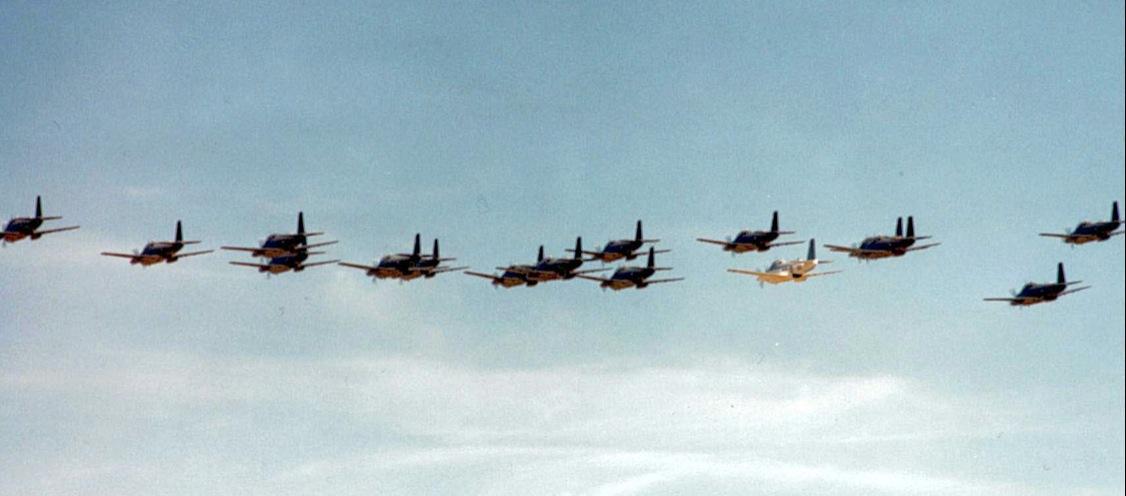 trentième anniversaire, 1989, défilé aérien de tous les appareils ...